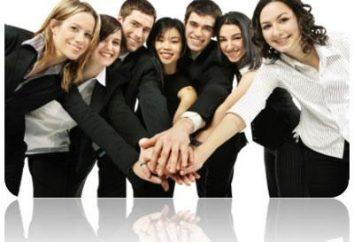 ¿Cuáles son las competencias profesionales de la gerente?