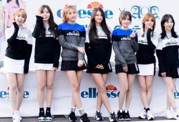 Koreańska grupa AOA: up, biografia, albumy