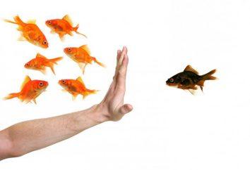 O que é discriminação? Existe algum lugar no século XXI?