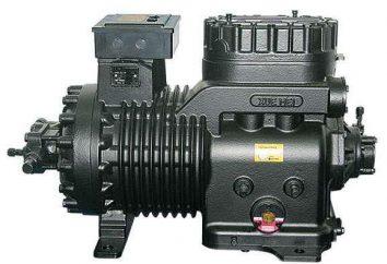 Compressores: tipos, tipos de compressores com uma foto, a finalidade e princípio de funcionamento