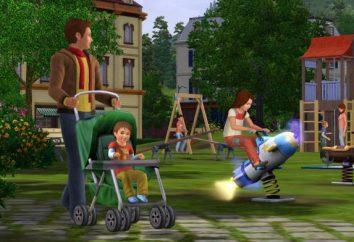 """""""Per tutte le età: The Sims 3"""". """"The Sims 3"""": una rassegna di codici, installazione"""