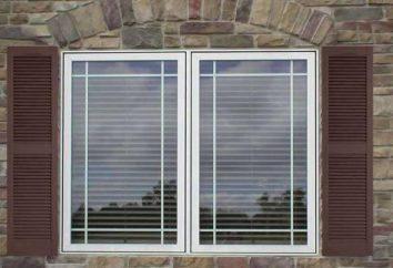 fenêtre Options cadres sur la façade de la maison