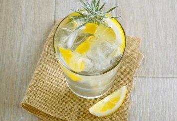 Pić gin: skład receptury. Jak pić gin. Koktajle z ginu