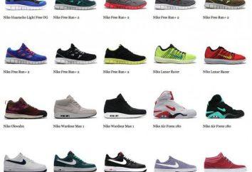 Les chaussures de sport les plus cool: une vue d'ensemble, notation, fabricant, modèle et commentaires