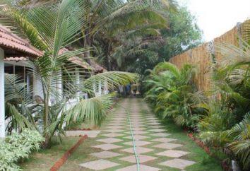 Hôtel 3 * Morjim Resort (Goa, Inde): description et commentaires