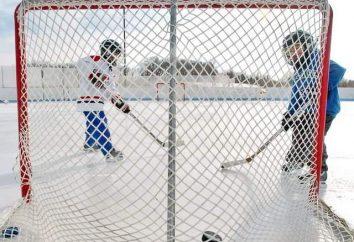 Tipi e dimensioni di porte hockey