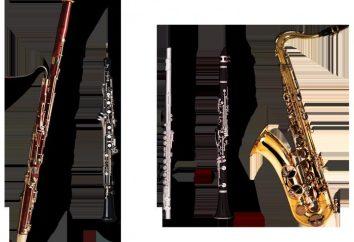 strumento a fiato musicale. Vento strumenti di legno Symphony Orchestra