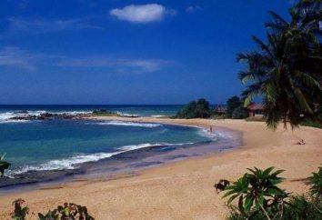 L'aeroporto internazionale di comodo Sri Lanka accoglie gli ospiti