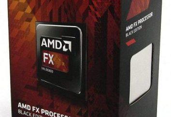 Procesor AMD FX-6300: overclocking, opinie. Procesor AMD FX-6300 OEM