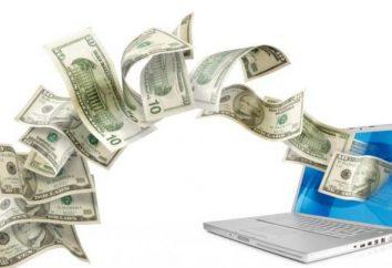 E-pieniądze: rodzaje, klasyfikacja, definicja, charakterystyka