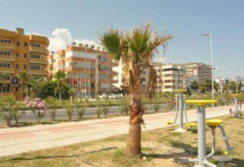 Recensioni dell'hotel Gold Twins Suite Hotel 3 * (Turchia / Alanya)