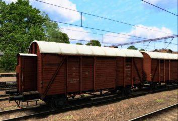 Trasporto ferroviario: quanta parte del vagone ferroviario