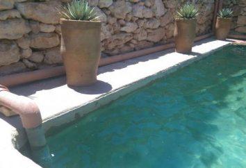 Selbst gemachter Pool auf der Hütte: Materialien, Fertigungstechnik