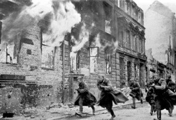 Berlim 1945 – Defesa e Libertação
