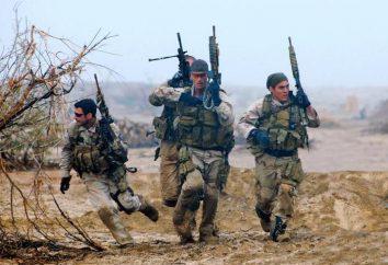 Nominativi SWAT: perché abbiamo bisogno e quali sono le