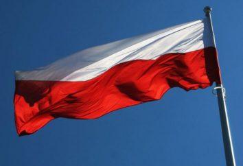 Bandiera della Polonia: l'origine e il significato