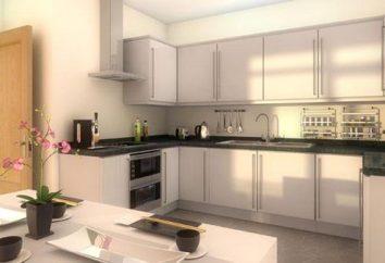 software do projeto da cozinha: SketchUp, PRO100, KitchenDraw. desenhador da cozinha