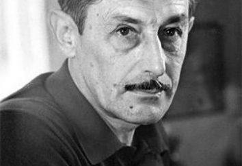 """Analyse """"In den Gräben von Stalingrad"""" Nekrasov"""