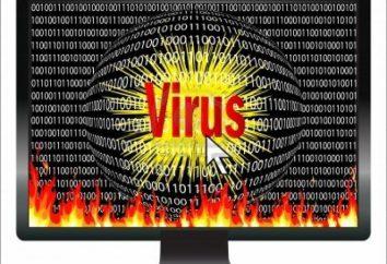 XTBL (vírus -encryptor): como decodificar? arquivos decodificador após um vírus com extensão XTBL