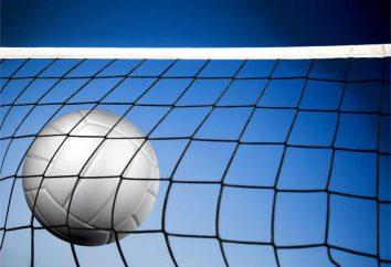 Technique et tactique de volley-ball: la description, les caractéristiques et les faits intéressants