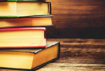 Wie kann man einen Plan erstellen und anwenden, der einen literarischen Helden charakterisiert