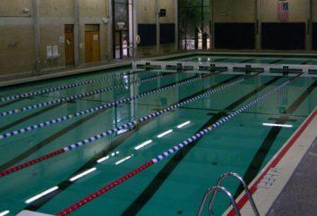 Meerwasser-Schwimmbad in Moskau – eine gute Möglichkeit, ohne das Resort zu entspannen