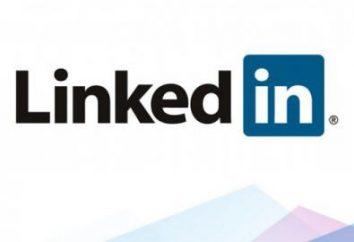 O que é o LinkedIn? Comentários do profissional LinkedIn rede social.