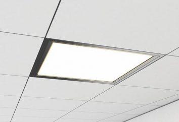 LED ultrafino del panel: descripción y aplicación