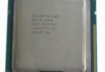 Intel Xeon X5650 Processore: descrizione e recensioni