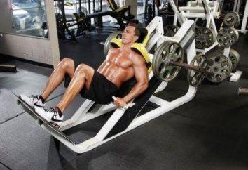 Hack Squat – el mejor ejercicio para las caderas