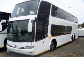 Autobus dwupoziomowy – najlepszy transport turystyczny