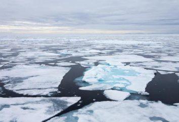 La profundidad media de la topografía del fondo del Océano Ártico y el clima