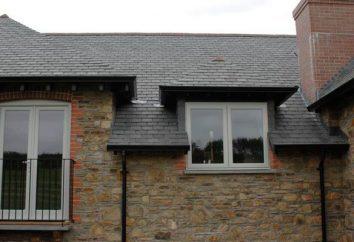 Wie viel kostet ein neues Dach?