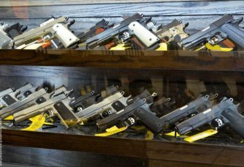 Ostenta arma de pequeno calibre: Descrição, resolução e comentários