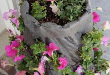 macizos de flores verticales con sus propias manos