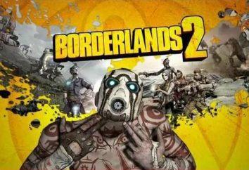 """Borderlands 2 Come si gioca in rete: via Hamachi, nel """"incentive"""""""