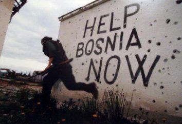 Guerre de Bosnie: Causes