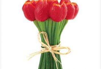 Wie ein Strauß Tulpen erstellen