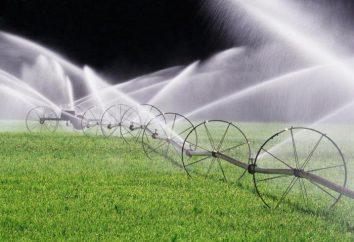 La signification du mot «irrigation». Qu'est-ce que l'irrigation?