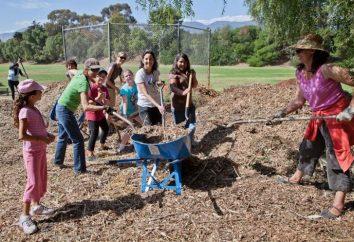 Jardín: la planificación – la clave para un alto rendimiento!