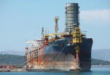 Pompe della nave: tipi, classificazione, caratteristiche, scopo