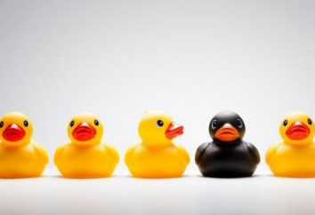 conductas marginales – ¿qué es esto? Características de comportamiento marginal