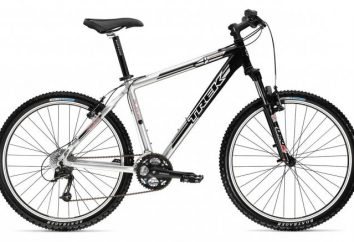 Mountain bike MTB: cliente sportivi e dilettanti