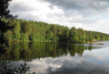 Simaginskoe grande lago – un luogo per la ricreazione e la pesca
