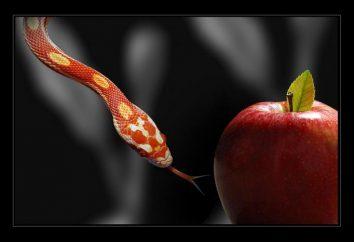 Temptations – ça veut dire? sortes de tentations