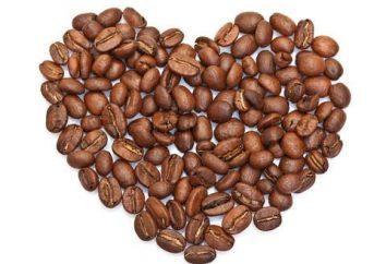 Panneaux de grains de café. Créer propre image parfumée