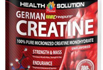 Uma boa creatina para um conjunto de massa muscular: a classificação, título e comentários