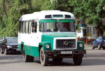 samochód fabrycznie autobus Kurgan – KAwZ-3976: opis, zdjęcia i specyfikacje