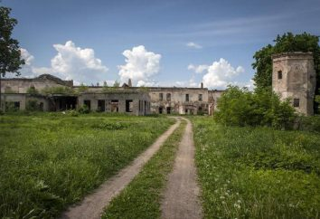 Bykhov Castle: die berühmtesten Ruinen in Belarus
