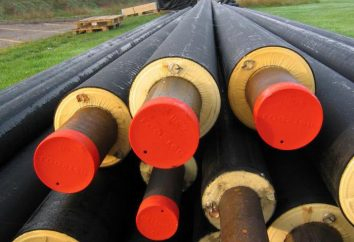 Come scegliere l'isolamento per i tubi dell'acqua? Panoramica dei produttori e istruzioni per l'installazione